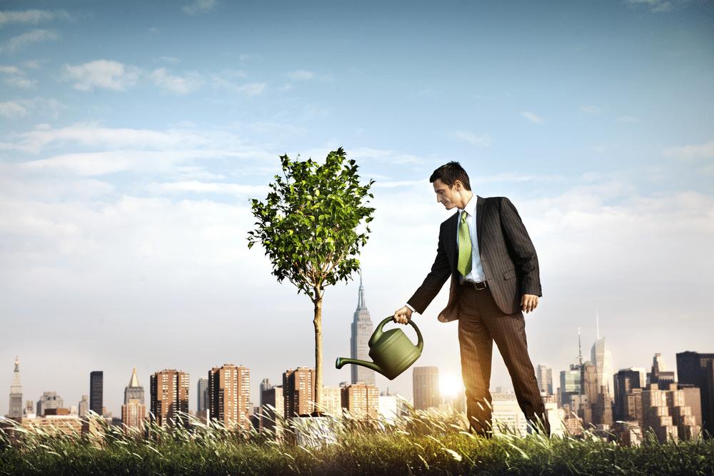 Sebrae: Empréstimo para ajudar sua empresa a crescer